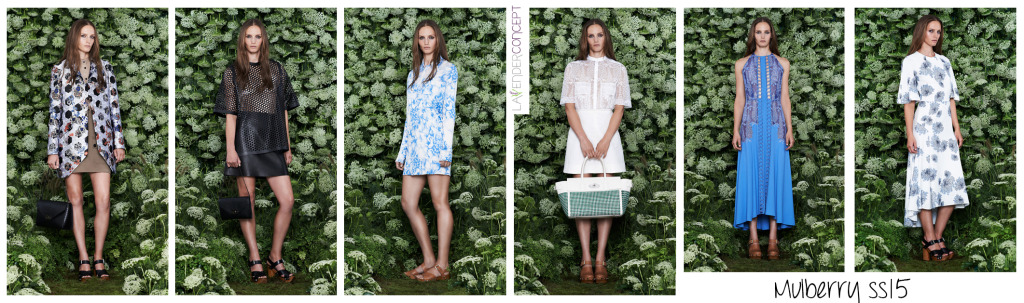 Mulberry SS15